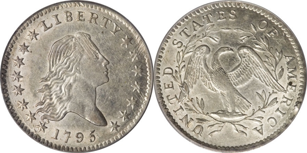 AU55 Flowing Hair Half Dollar Image