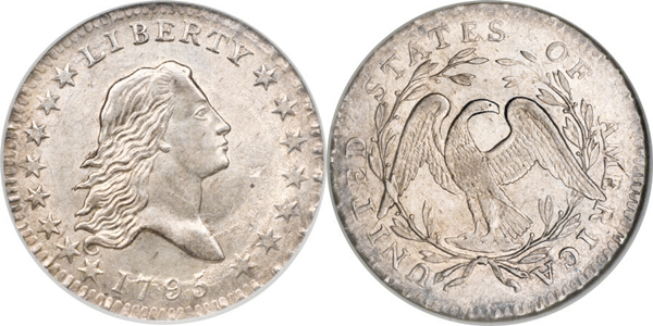 MS63 Flowing Hair Half Dollar Image