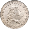 Flowing Hair Half Dollar Grading Images
